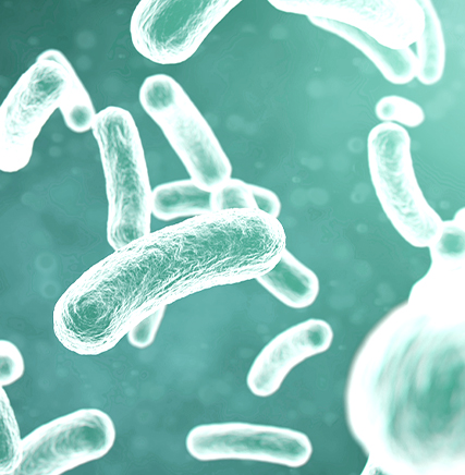 What is Microbiome Therapeutics?